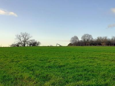 Foto zur Meldung: Mühlenberg wird autofrei