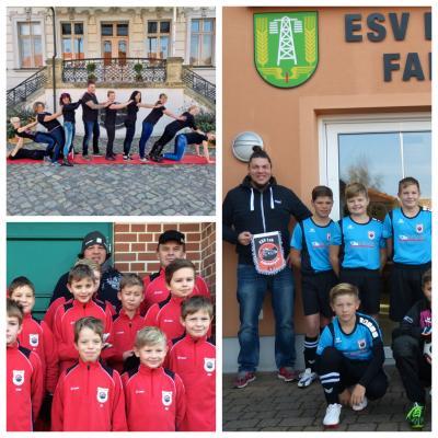 ESV Sponsor - Ronny Schollbach