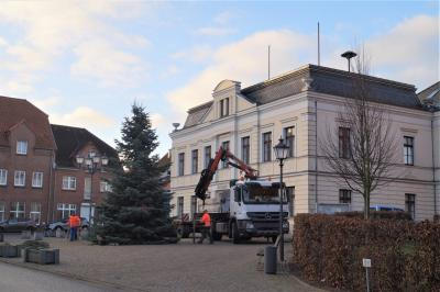 Foto zur Meldung: Weihnachtsbaum 2020
