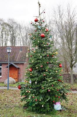 Foto zur Meldung: Heiligabend-Andacht in Schmalensee am 23. Dezember am Feuerwehrgerätehaus – Anmeldung nötig
