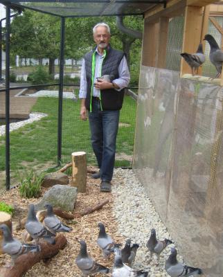 Vorstand Herbert Müller mit seinen Dt. Modeneser Schietti blau mit bronze Binden