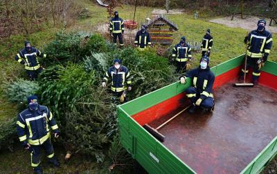 Die Feuerwehr sammelte die Weihnachtsbäume ein