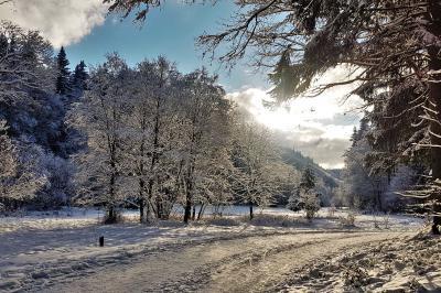 Foto zur Meldung: Weihnachts- und Neujahrsgrüße - Ortschaftsbürgermeister Geraberg