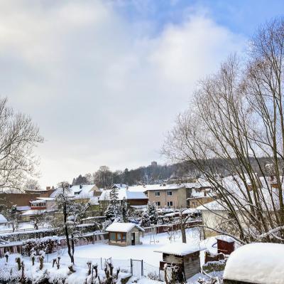 Kranichfeld im Winter
