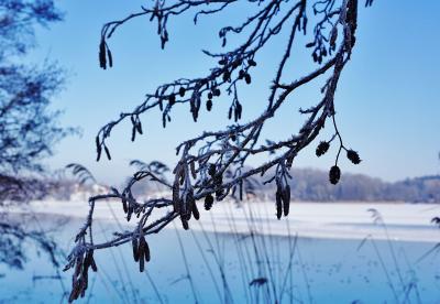Foto zur Meldung: Winterliches Schmalensee – einfach schön!