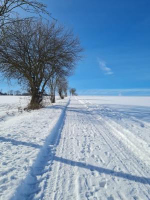 Winterwunderland Bühren