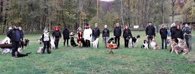 Jahresrückblick 2020 - Hundesportverein Geraberg e.V.