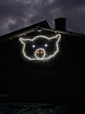 Leuchtschwein