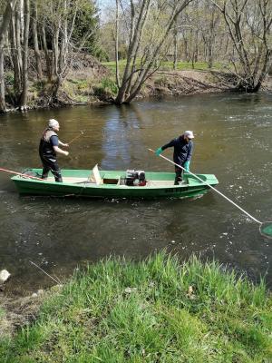 Probebefischung zum Äschenprogramm