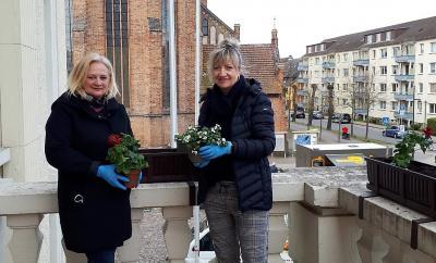 Foto zu Meldung: Blumen bringen  Farbe ins Stadtzentrum