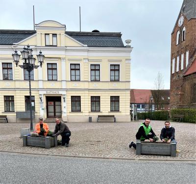 Foto zur Meldung: CDU-Neukalen bringt den Frühling in die Stadt