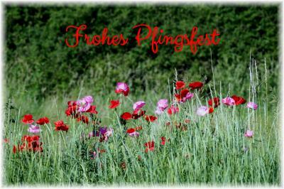 Foto zur Meldung: Fleischerfachgeschäft A. Glasow - schönes Pfingstfest