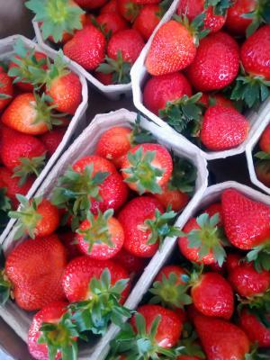 Erdbeeren für Marmelade