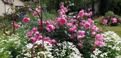 Besucher können Eindrücke in unterschiedlichen Gärten sammeln