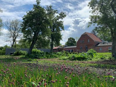 LEADER Projekt: Gärtnerei am Gutshaus Parow