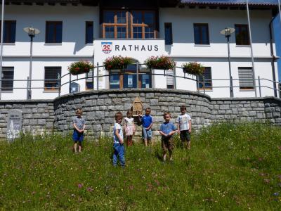 Foto zu Meldung: Wildblumenwiese vor dem Rathaus in Prackenbach