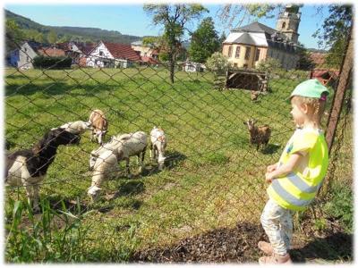 """Wandertage – auch bei den Jüngsten im Kindergarten """"Zwergenland"""""""