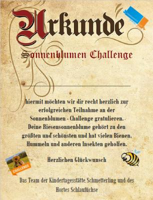 Die Gewinnerinnen und Gewinner der Sonnenblumen - Challenge stehen fest