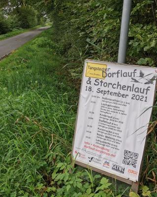 Grundschule unterstützte Storchen- und Dorflauf