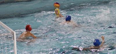 Foto zur Meldung: Wasserball U12 Qualifikationsturnier zum Deutschen Pokal