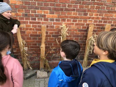 Ausflug zum Thema Getreide der 3. Klassen