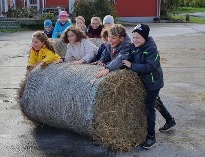Bauernhof statt Schulhof