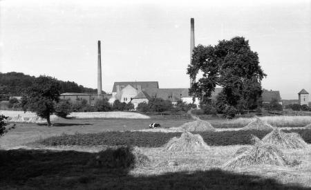 Ziegeleiansicht 1955
