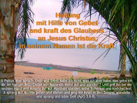 0471-Heilung 2012.jpg