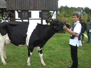 Christopher Schwabe (2. Lehrjahr Tierproduktion) im Jungzüchter-Wettbewerb