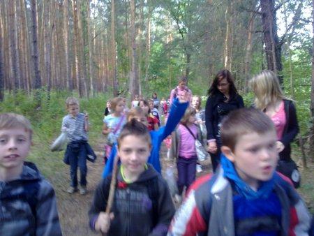 Unser Wald_2