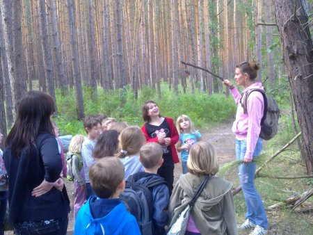 Unser Wald_1