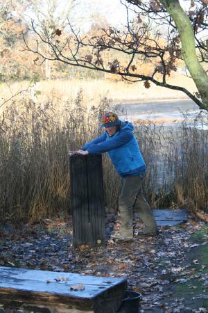 Wasservogelreservat Wallnau