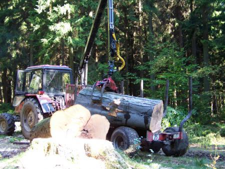 Forstwirtschaftliche-Dienstleistung