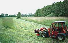 gruenlandmahd.jpg
