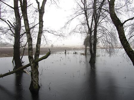 Winter im Moor 3