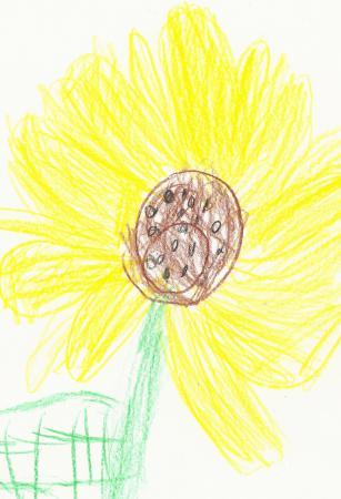 Sonnenblume gemalt von Mira
