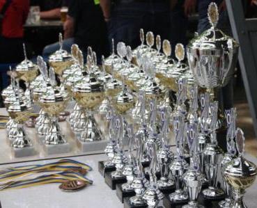 2013 Stadt Pokal