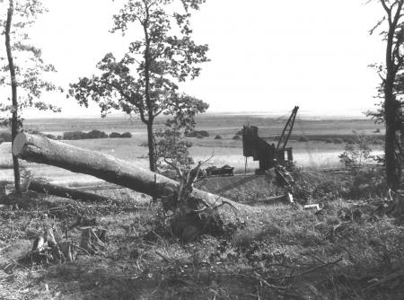 Bagger in der Tongrube am Wald 1957