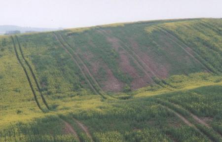 Abb. 1_Ackerfläche auf kuppiger Moräne im Frühjahr.JPG