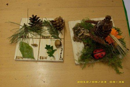 Waldprojekt_9