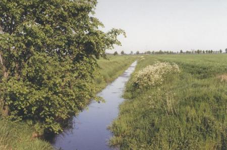 Abb. 17 Vorfluter im Oderbruch