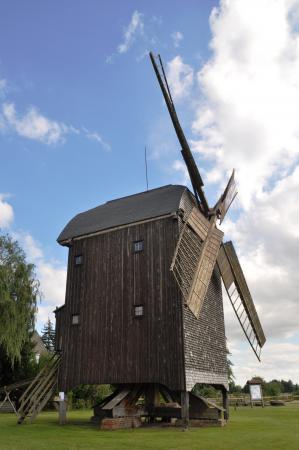 Bockwindmühle in Wilhelmsaue