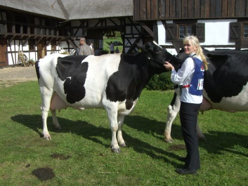 Antje Tietz, Leiterin der Milchproduktion, führt im Ring