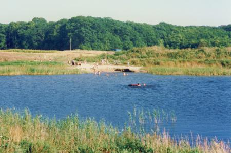 Badestelle an einem Teich in den Gartsbruchwiesen (1991)