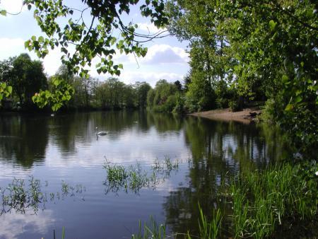 Badestelle Vogelsdorfer See