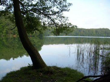 Binenwalde-See_KLF