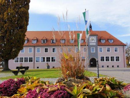 Blick durchs Gras auf Rathaus