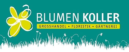 Koller GmbH