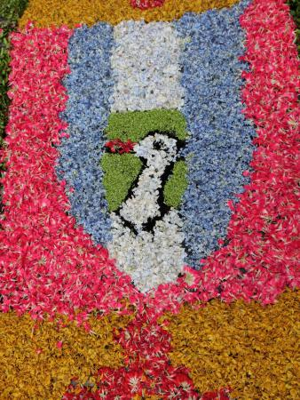 Blumenteppich Vierkirchen.JPG