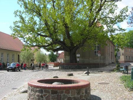 Brunnen auf dem Markt.jpg